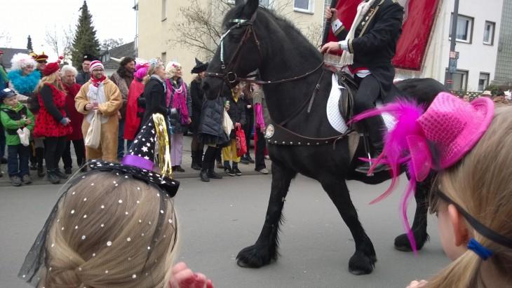 hevosia_karnevaaleissa_saksassa