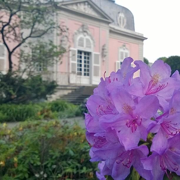 Schloss Benrath Dsseldorf DE visitduesseldorf Dsseldorf Schloss Benrath schlossbenrath castlehellip