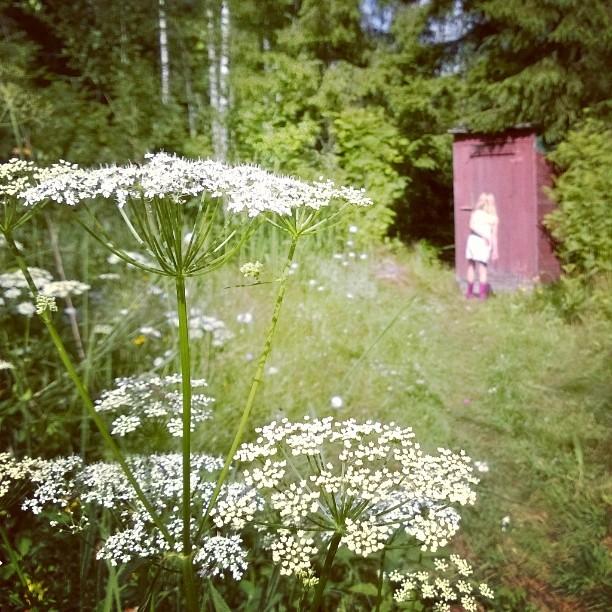 Metsn keskell on rauhaisaa viett lomaa Tysi vastakohta arjelle suomihellip