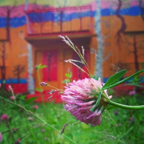 Vri sateiseen ja kylmn pivn! mntt kuvataideviikot mnttvilppula mntnkuvataideviikot taidekaupunkihellip