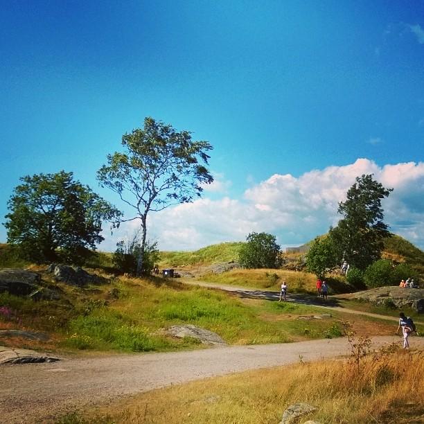 Suomenlinnan luonto ihastutti! suomenlinna maailmanperint unesco visithelsinki suomi kotimaassa suomiretkihellip