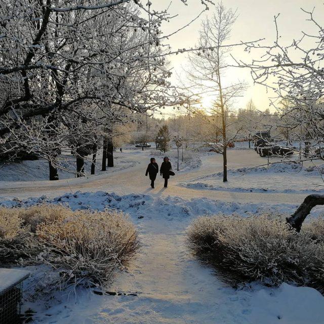 Iltapivkvelyll pakkaspivn suomi matkablogi lempipaikkojani kotimaassa pakkanen talvi talvipiv huurrehellip