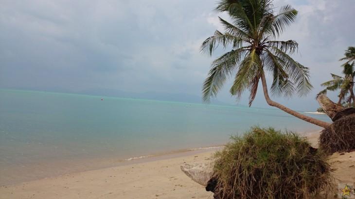 Joskus jonkin resortin ranta, nyt hylätty ja luonnon valtaama sellainen.