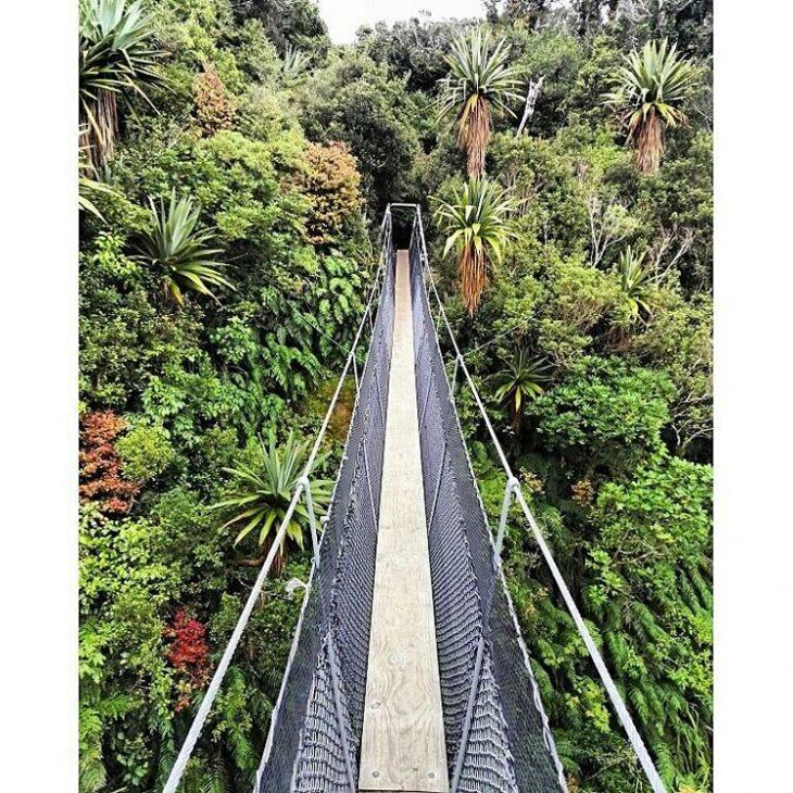 GREEN NORTH NZ