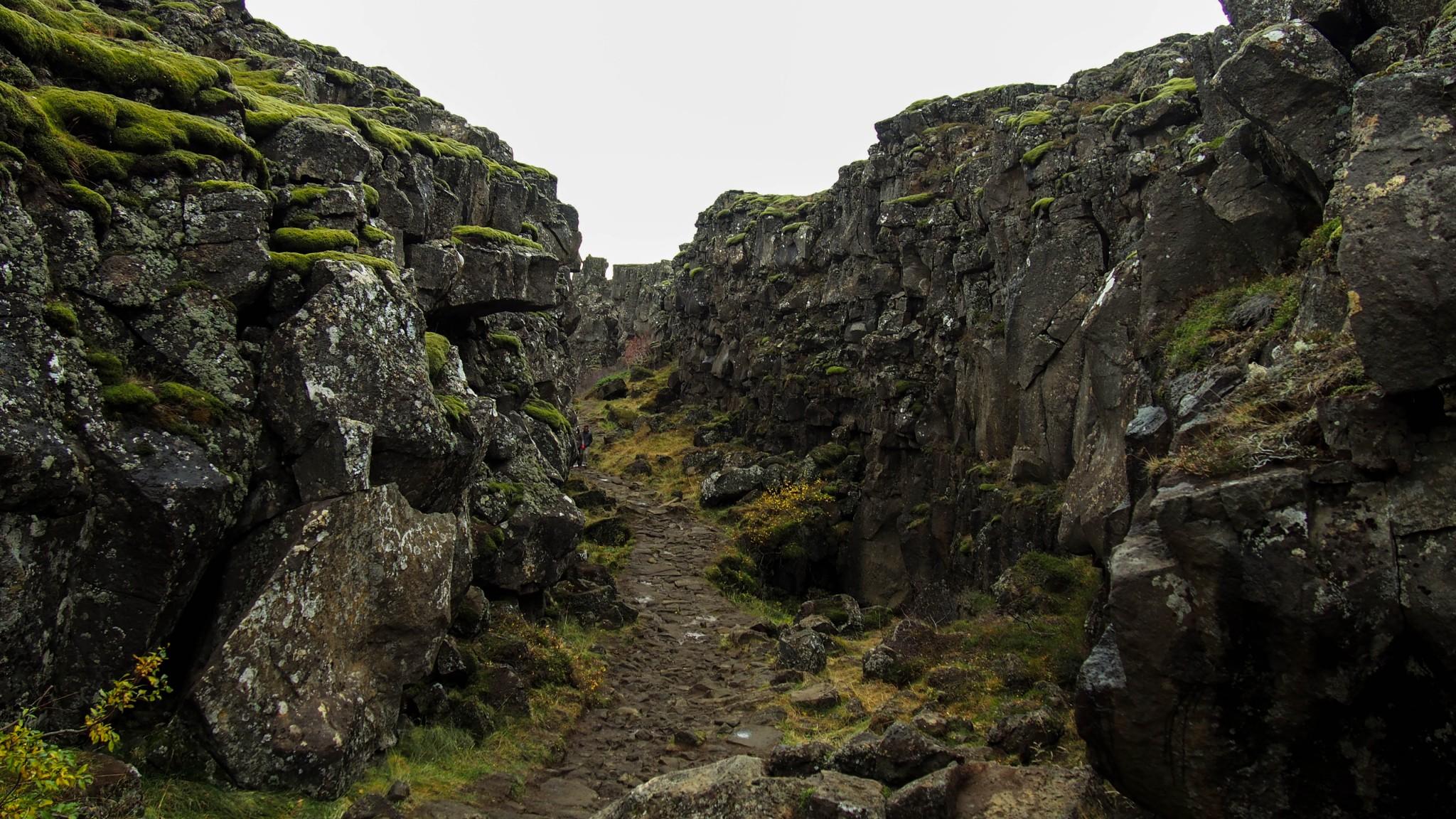 Thingvellir Islanti