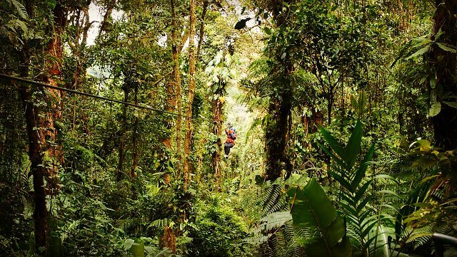 Costa Rica Monteverde Zipline Instagram Travel Thursday