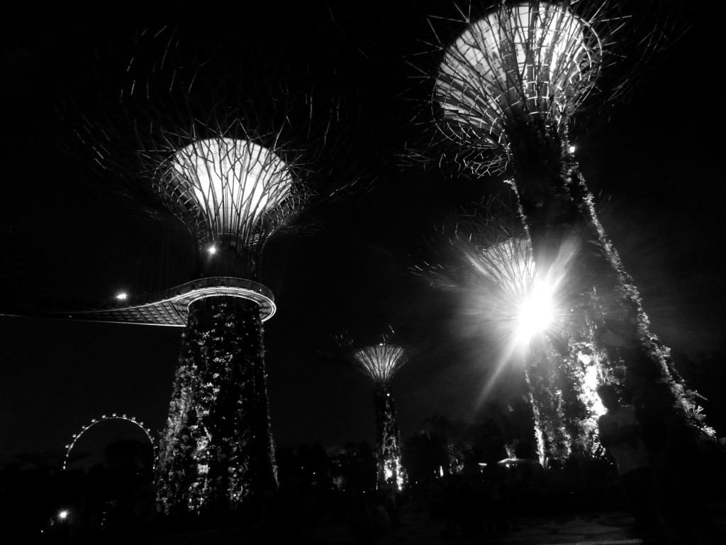 bw gardens by the bay