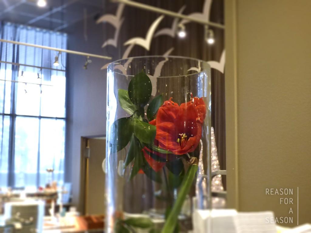 aamiainen ruusu