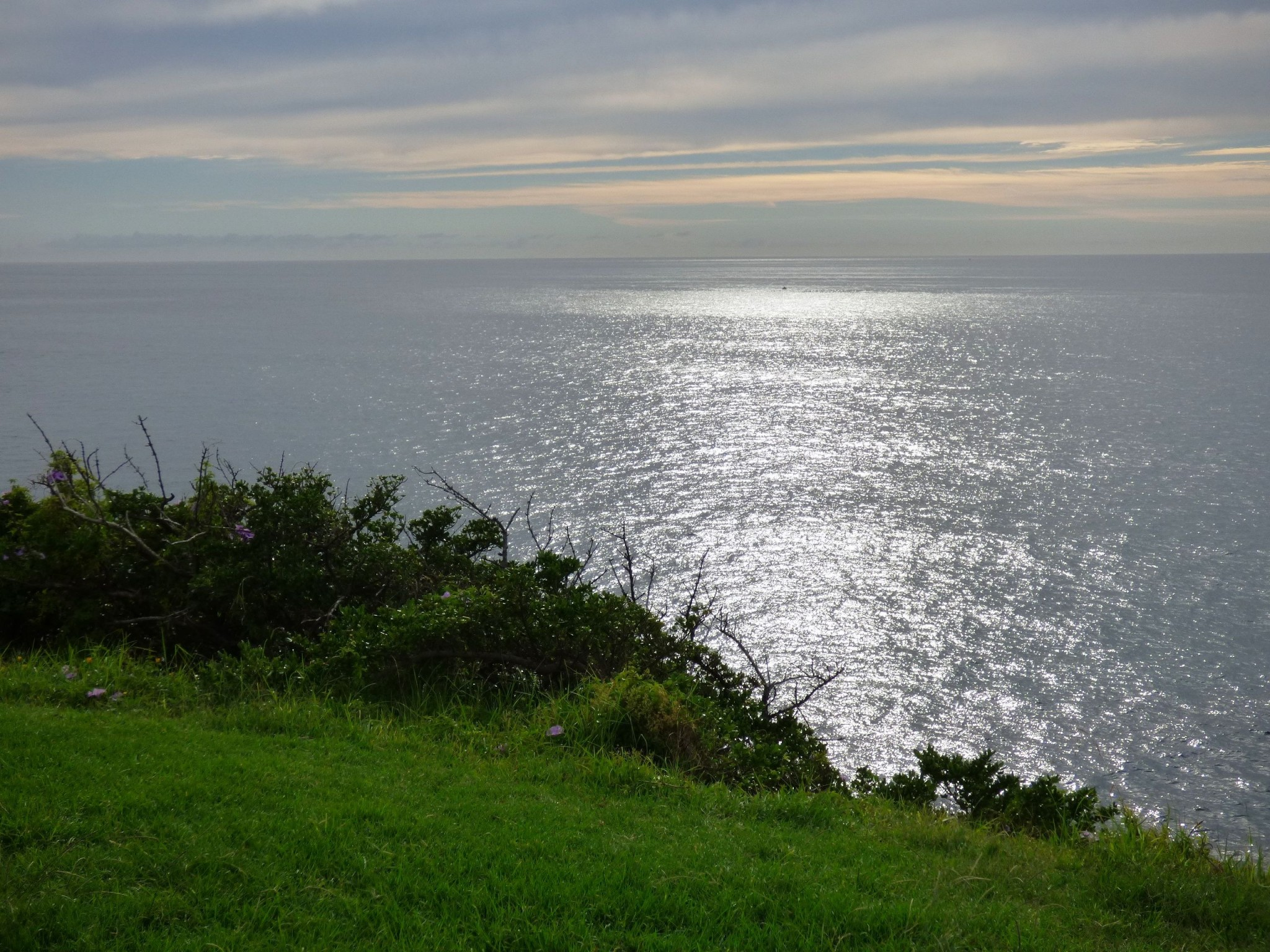 15 sydney sea