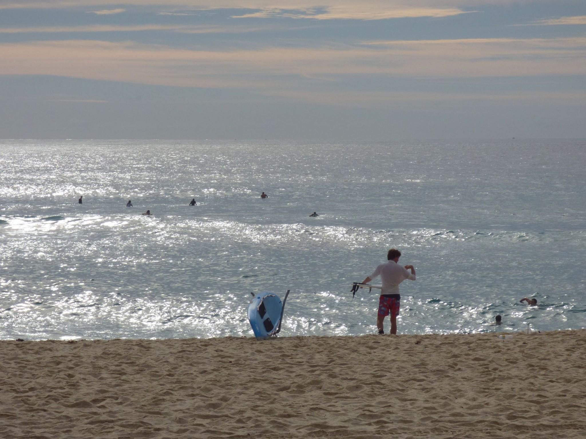 17 surfer