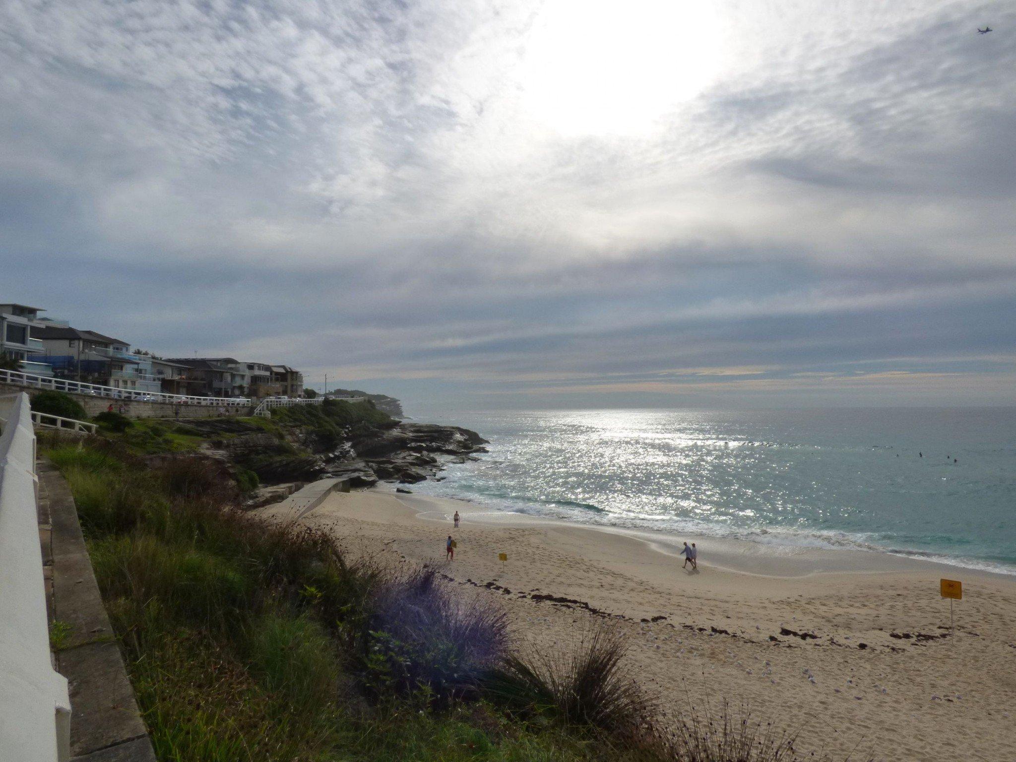 18 shoreline sydney