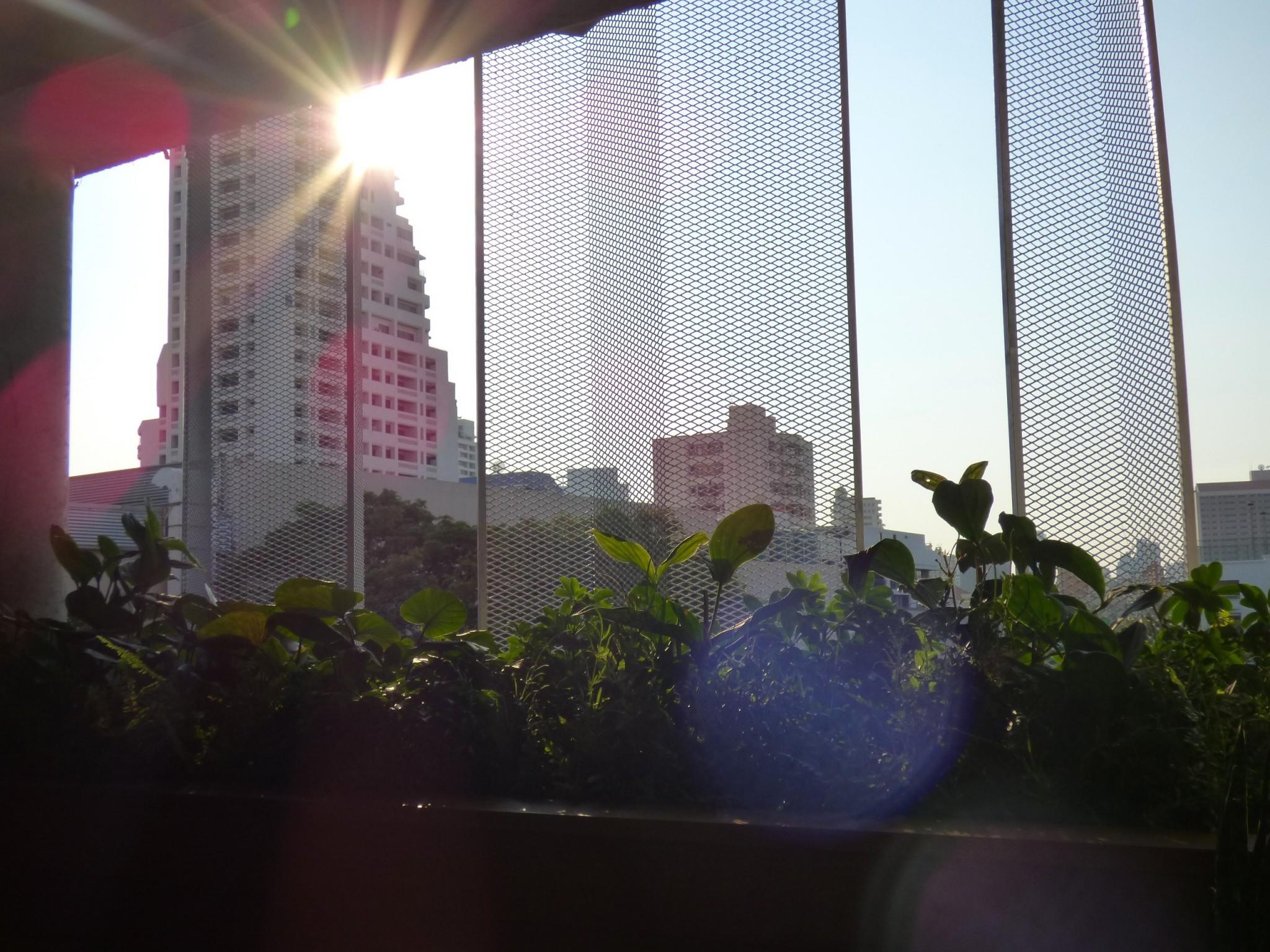 The Commons Bangkok
