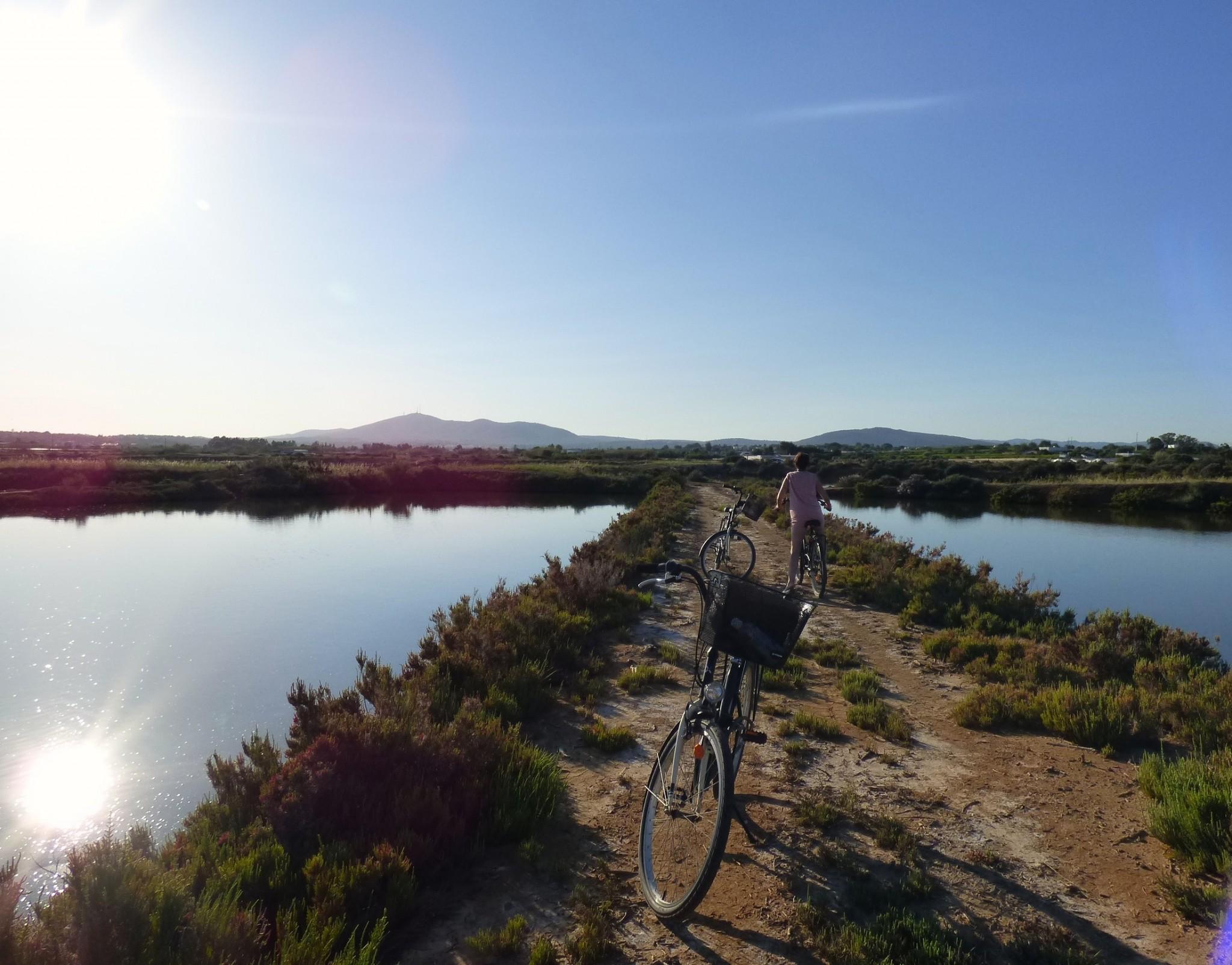 Algarve Ria Formosa