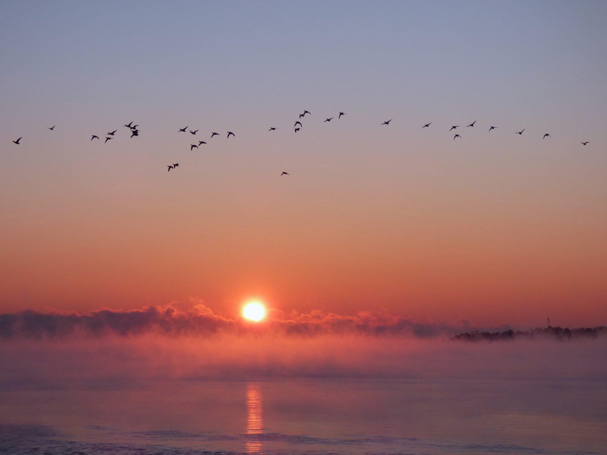 Uunisaari auringonlasku