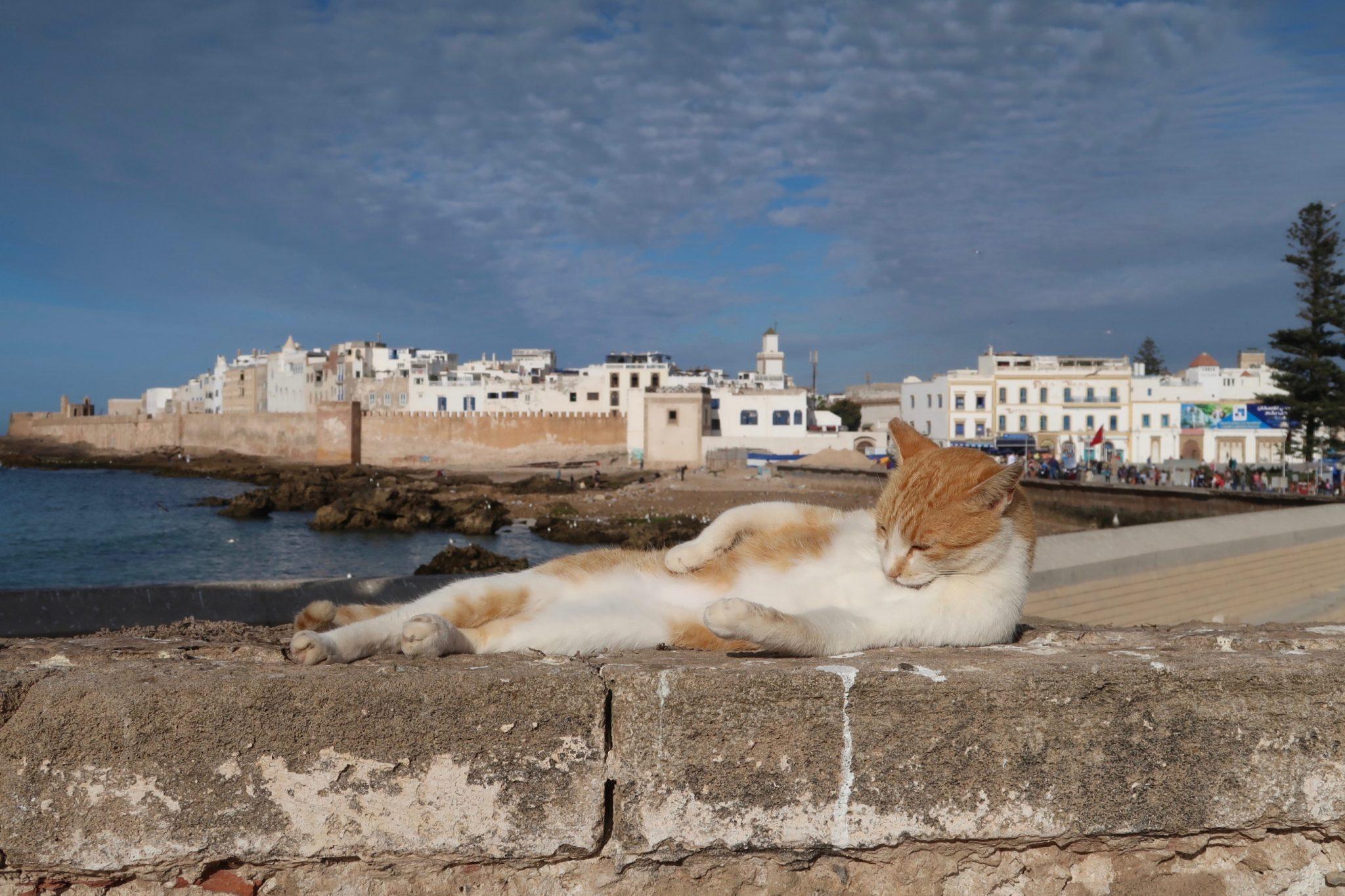 Essaouira Marokko