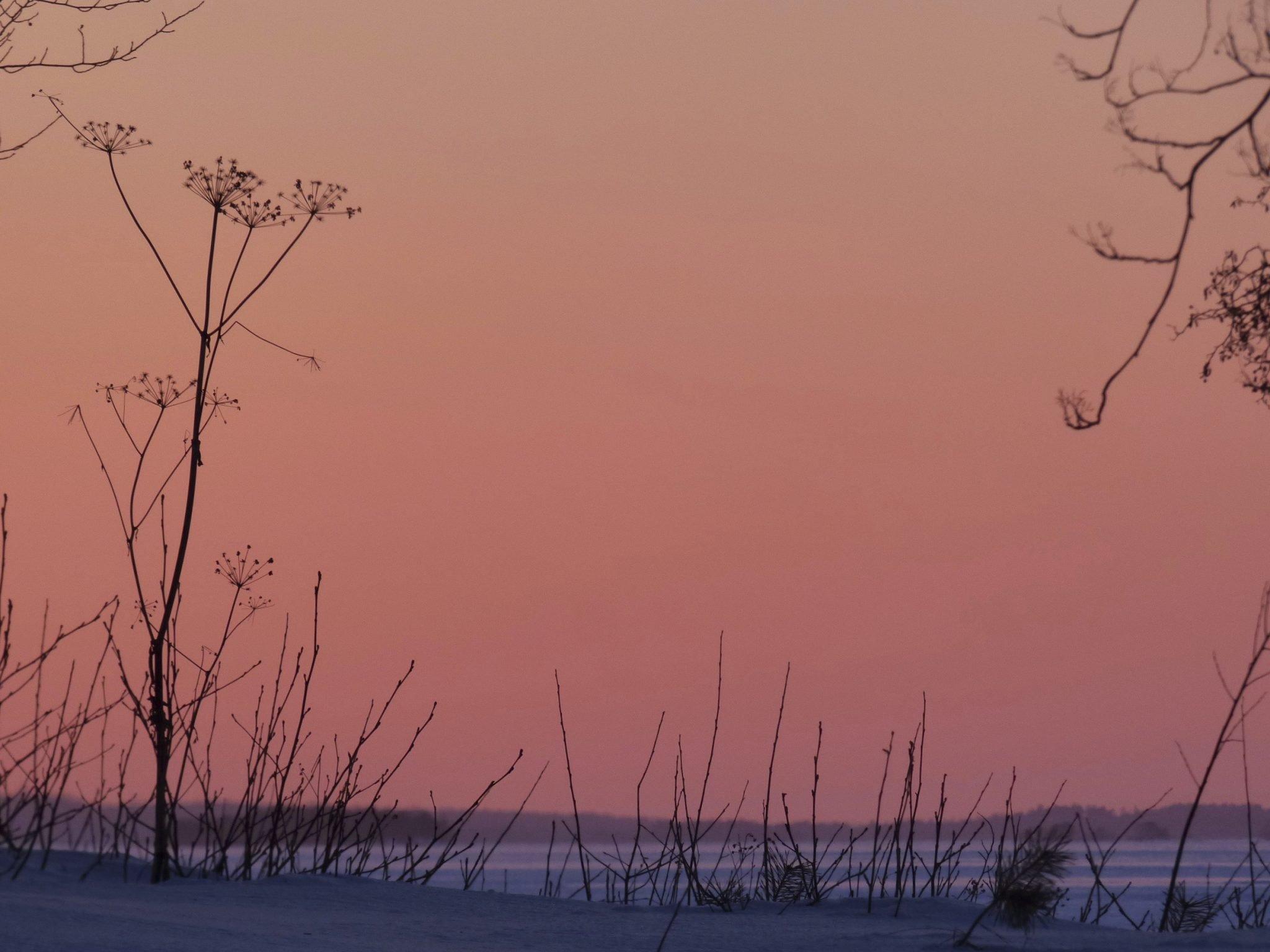 Auringonlasku Petäys Resort