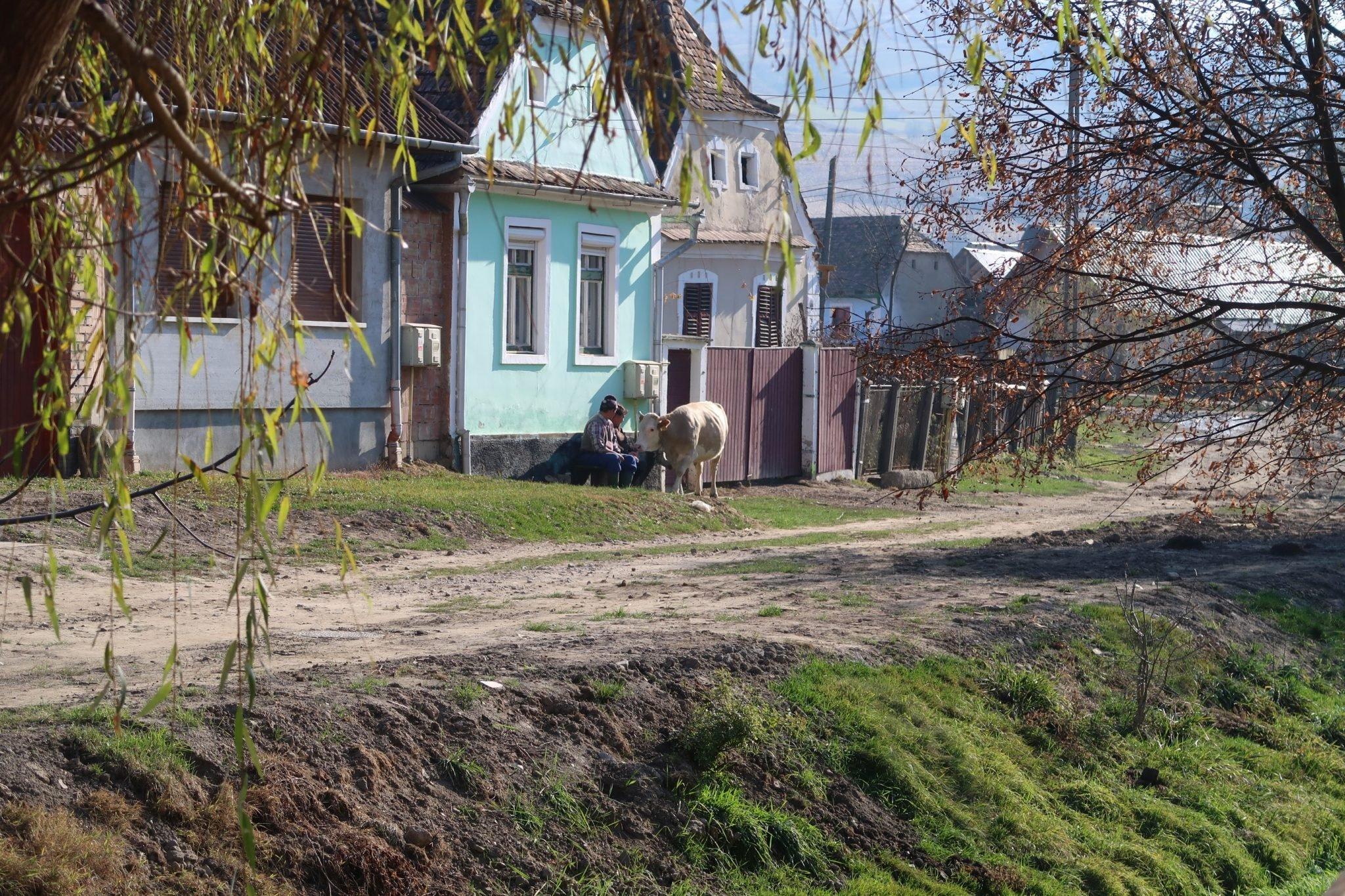 Romanian maaseutu