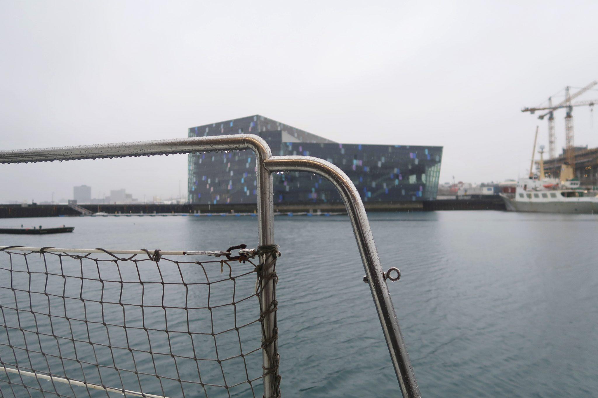 Reykjavik Harpa