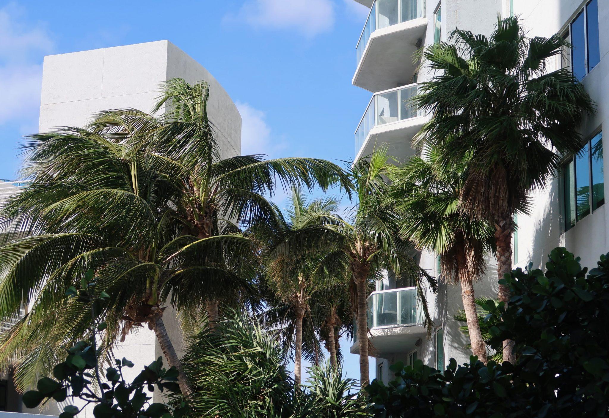 Miami Yhdysvallat