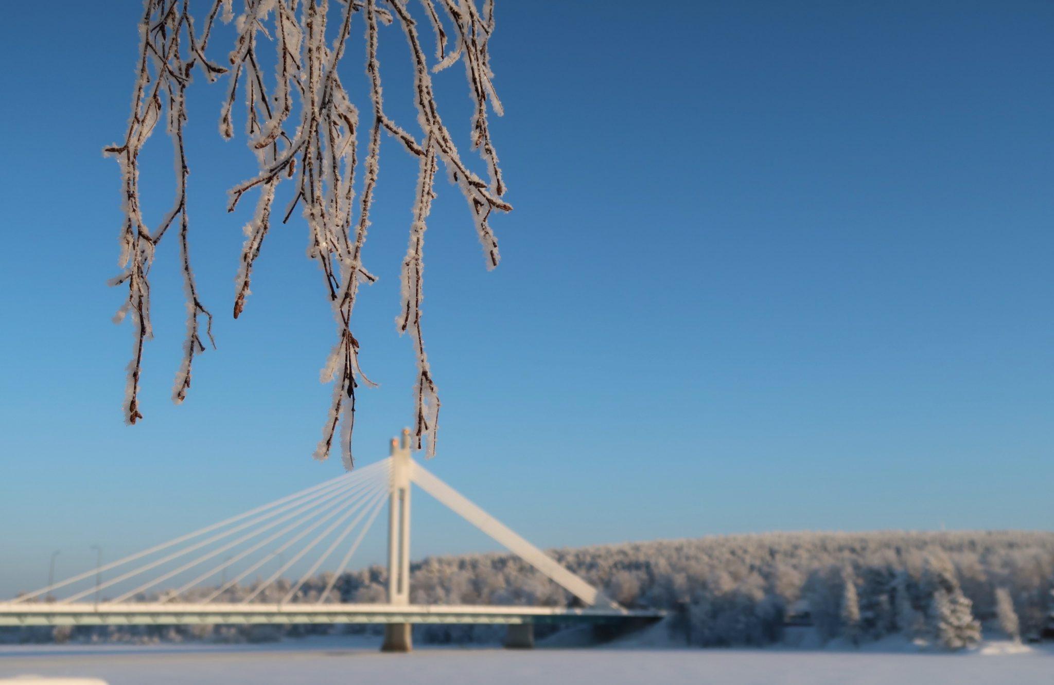 Rovaniemi Jätkänkynttilä