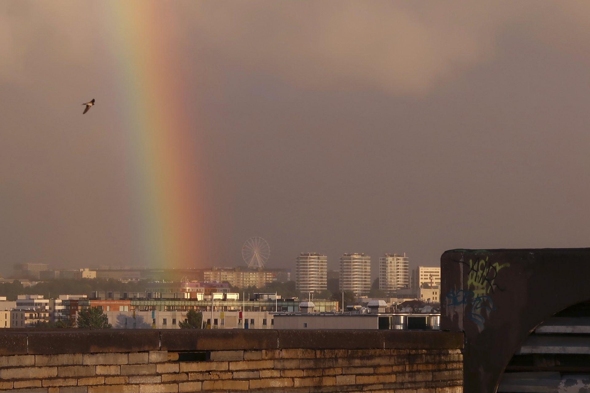 Tallinna sateenkaari