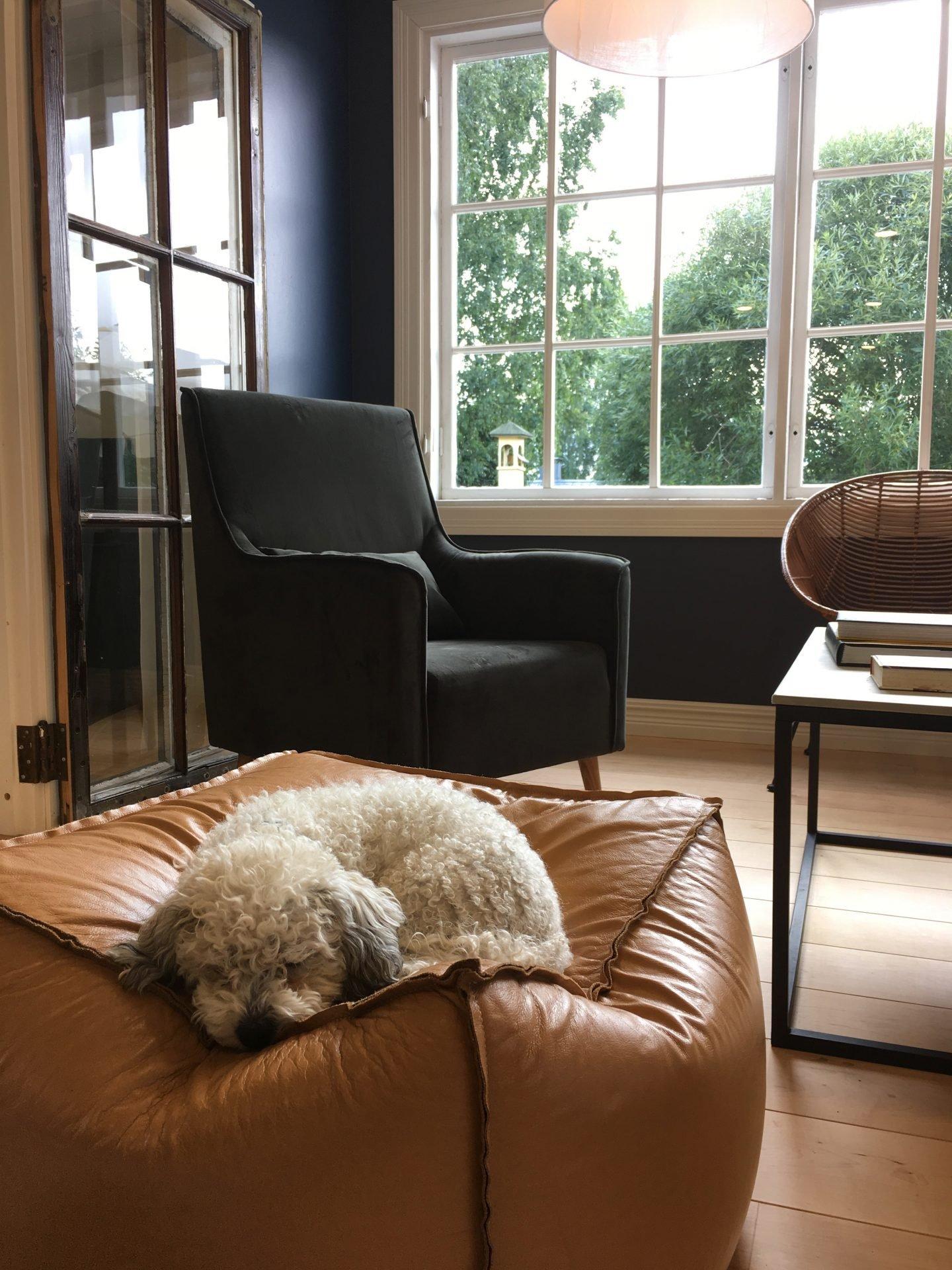 Koira Hotel & Butik Lillan