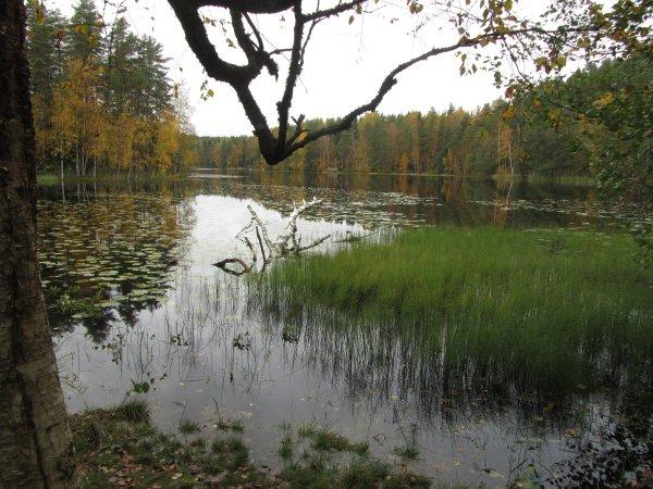Nuuksio_Kansallispuisto_5724_Copyright_Matkoilla_blogi