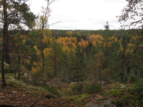 Nuuksio_Kansallispuisto_5790_Copyright_Matkoilla_blogi
