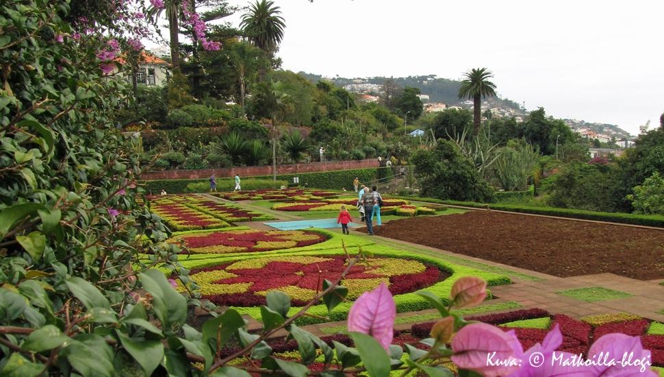 Madeira: Funchalin Kasvitieteellinen puutarha Kuva: Matkoilla-blogi