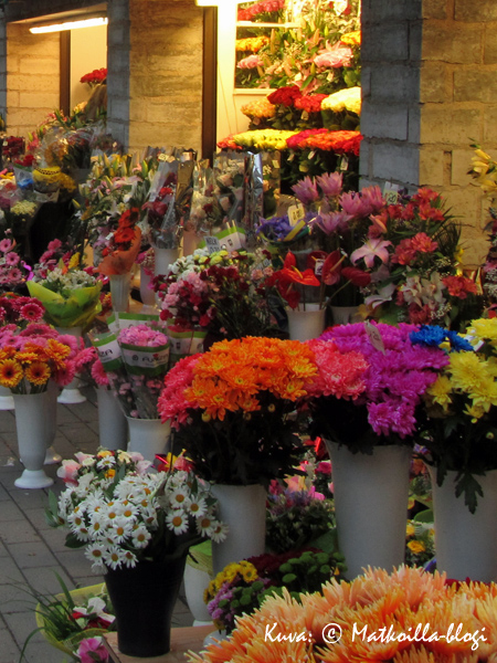 Viru-kadun kukkaloisto ja kukkien runsaus ilahduttaa aina. Kuva: © Matkoilla-blogi