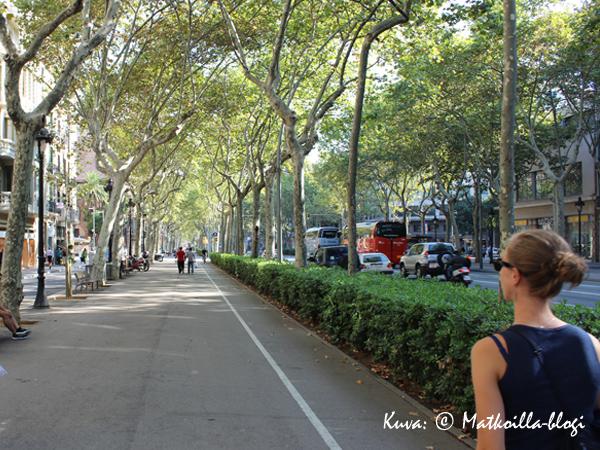 Leveä katu ja komea nimi: Gran Via de les Corts Catalanes. Kuva: © Matkoilla-blogi