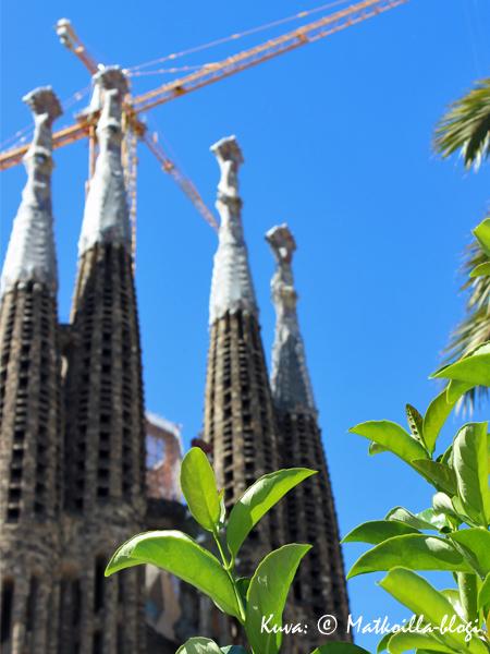 Barcelonan ikoni - Sagrada Familia. Kuva: © Matkoilla-blogi