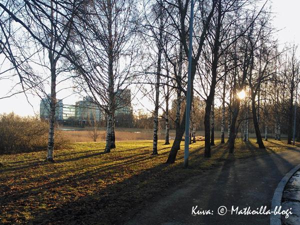 Syysiltapäivän viimeiset auringonsäteet. Kuva: © Matkoilla-blogi