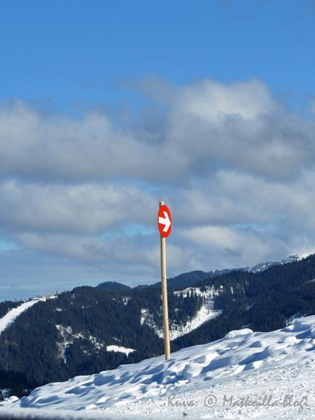 Punaisia päin tänä vuonna! Kuva: © Matkoilla-blogi