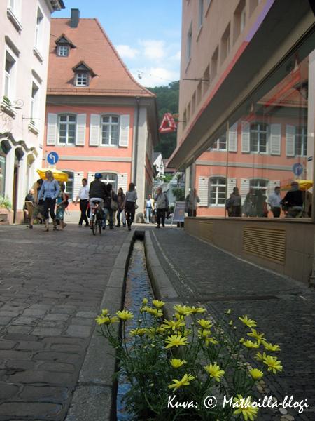 Paikka paikoin Bächele'iden yhteyteen saattaa löytää myös kukkaistutuksia. Kuva: © Matkoilla-blogi