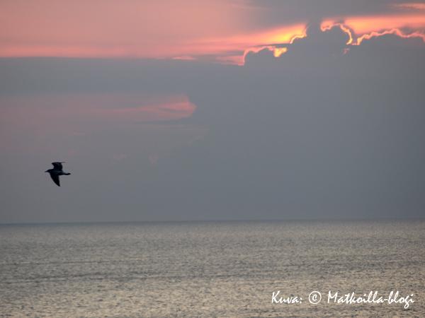 Auringonlasku Itämerellä. Kuva: © Matkoilla-blogi