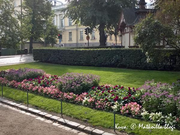 …ja myös paikallisten kannattaa pysähtyä ihailemaan kukkaloistoa. Kuva: © Matkoilla-blogi
