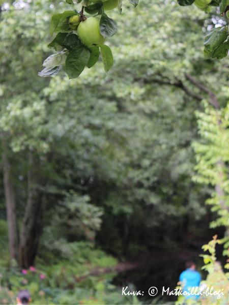 Kuninkaanlammen puutarha. Kuva: © Matkoilla-blogi