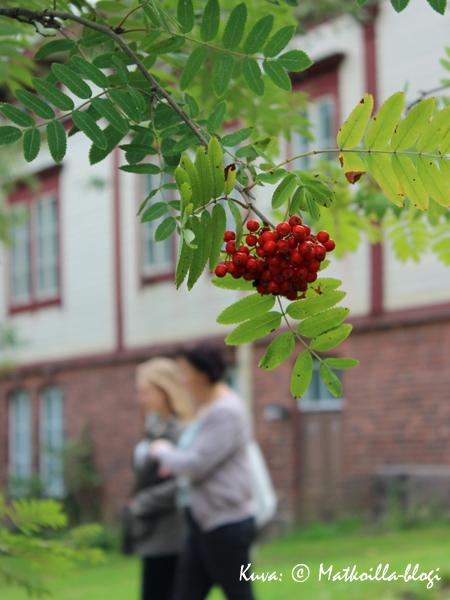 Sineybrychoffin huvilaa ympäröi laaja puutarha-alue. Kuva: © Matkoilla-blogi