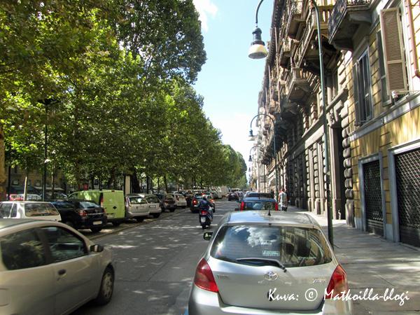 Torinon keskusta ei ennakko-odotustemme mukaan ollut ollenkaan tylsä kivierämaa, vaan vehreitä puistokatujakin oli runsaasti. Kuva: © Matkoilla-blogi