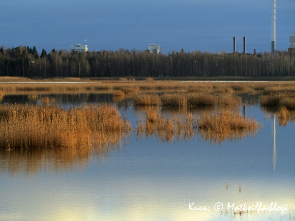 Syksyinen maisema Laajalahdelle Villa Elfvikin lintutornista . Kuva: © Matkoilla-blogi