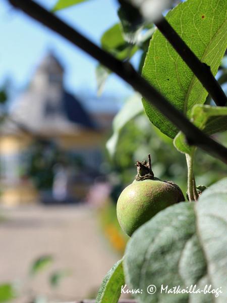 Aspegrenin puutarha Pietarsaaressa. Kuva: © Matkoilla-blogi