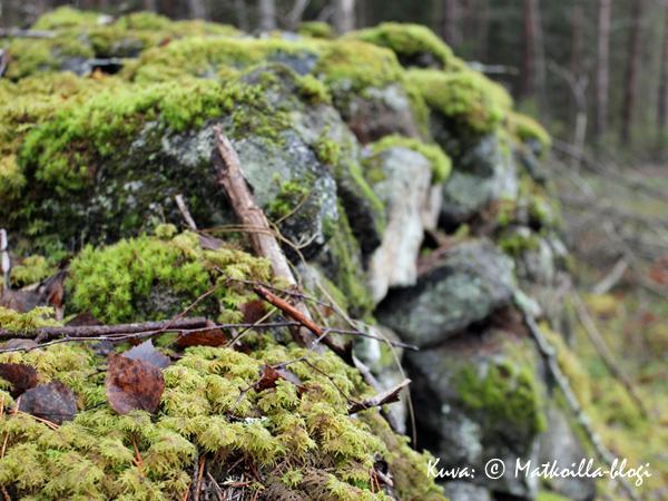 Vanha kivimuuri metsässä. Kuva: © Matkoilla-blogi