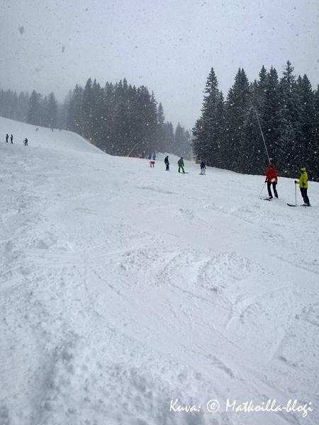 Pradalago Diretta, rinne nro 53 - lumipyryssä . Kuva: © Matkoilla-blogi