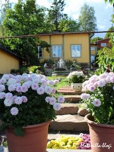 Puutarhaloistoa Loviisan vanhassakaupungissa. Kuva: © Matkoilla-blogi