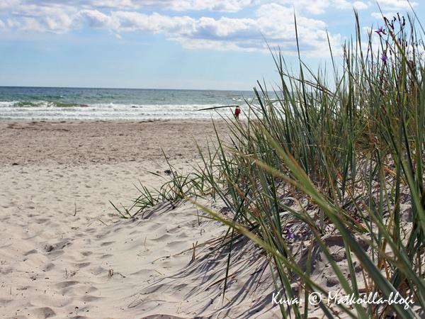 Fårö, Sudersandin hiekkaranta. Kuva: © Matkoilla-blogi