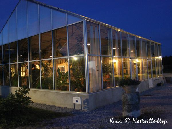 Lilla Bjersin ravintola on sijoitettu tarkoitukseen rakennettuun kasvihuoneeseen. Kuva: © Matkoilla-blogi
