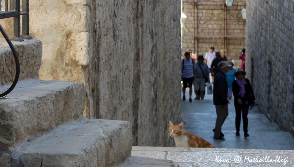 Dubrovnik, Kroatia. Kuva: © Matkoilla-blogi