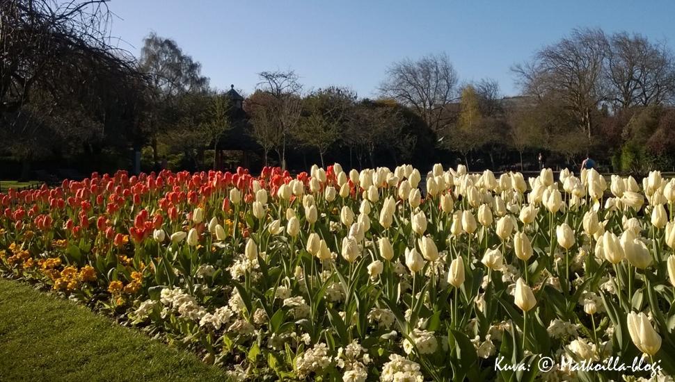 Dublin: St. Stephens Green -puisto. Kuva: © Matkoilla-blogi