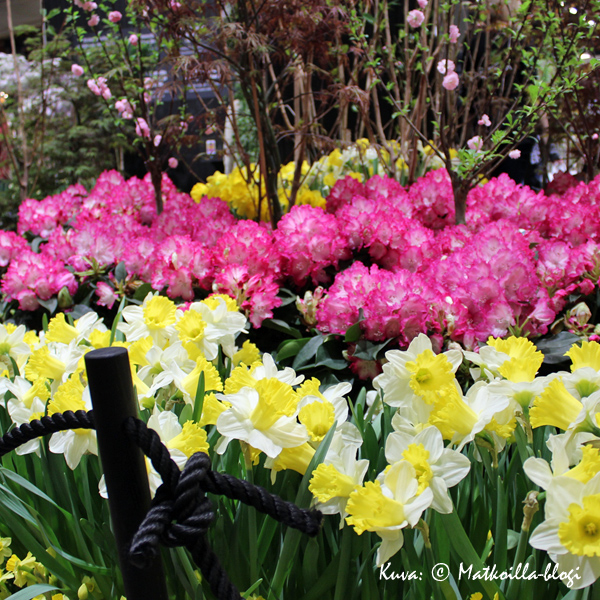 Kevätmessut 2016. Kuva: © Matkoilla-blogi